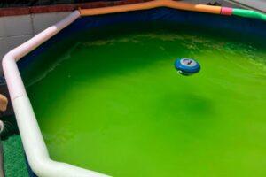 Piscina desmontable doméstica con el agua verde por algas